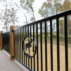 Black Wrought Iron Custom Railing with Nature-Scape