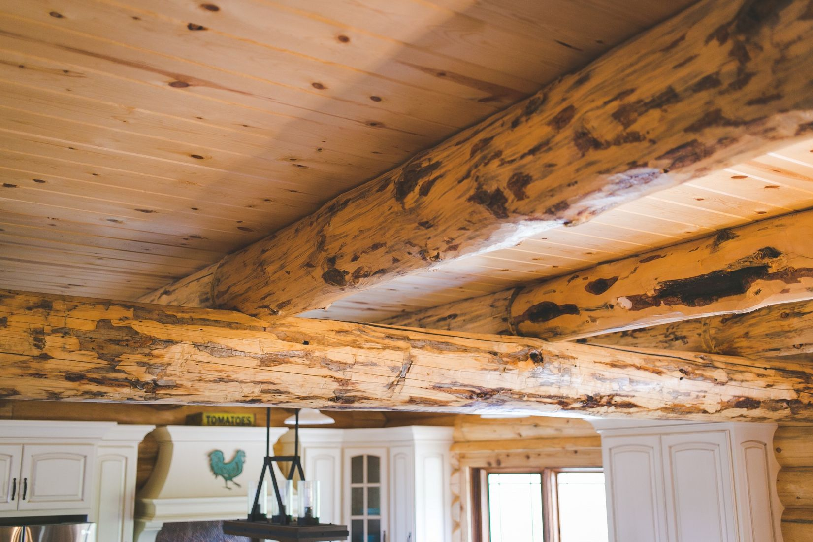 Rustic Log Joists and Rafters